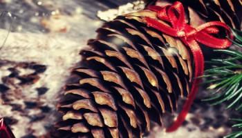 kerststukje_maken_shutterstock-1100x300jpg