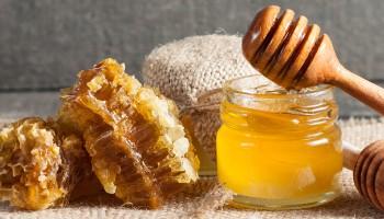 gezond verstand, honing