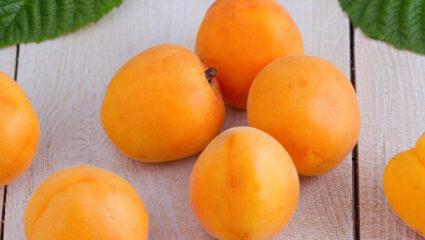 abrikozenslof