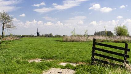 Landschap Nederland