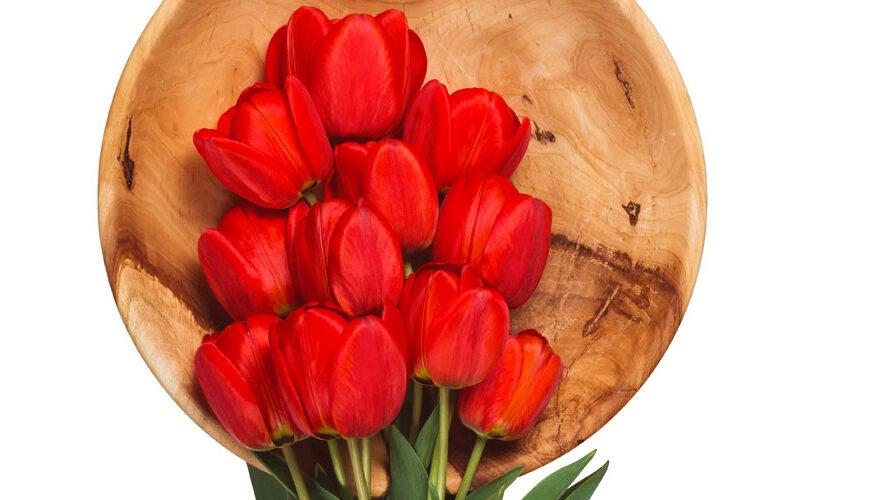 tulpenkoekjes