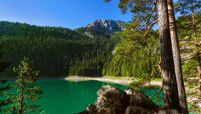 Črno jezero, het zwarte meer