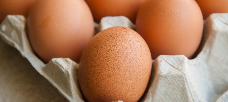NVWA eieren