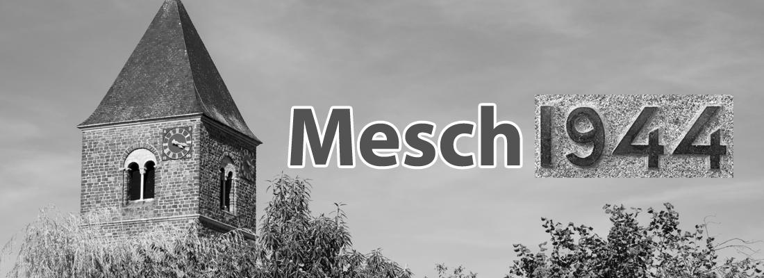 Mesch