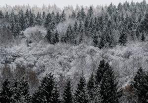 sneeuw in duitsland