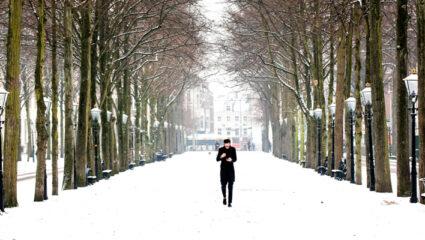 sneeuwkriebels