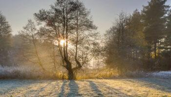 winterseizoen