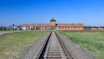 De ogen die Auschwitz zagen