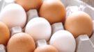 bruine en witte eieren