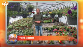 Tuintips van Tom Groot