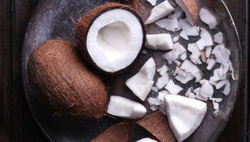 kokosrotsjes