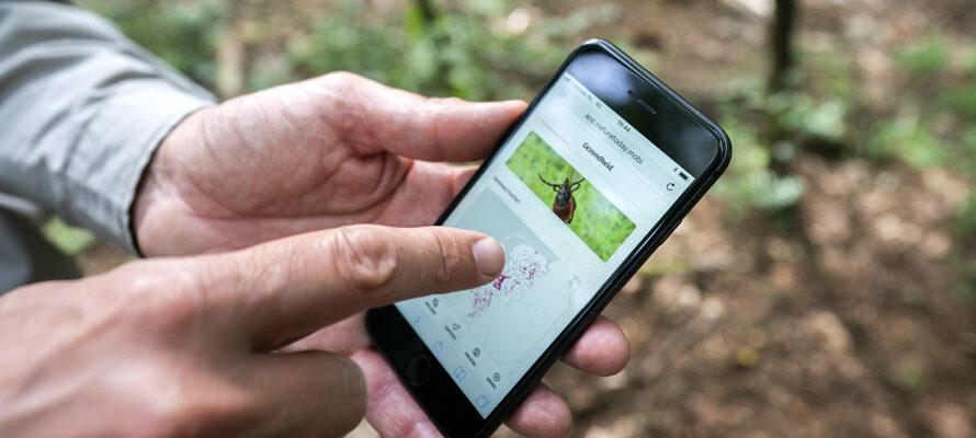 teken-app vertelt waar teek actief is