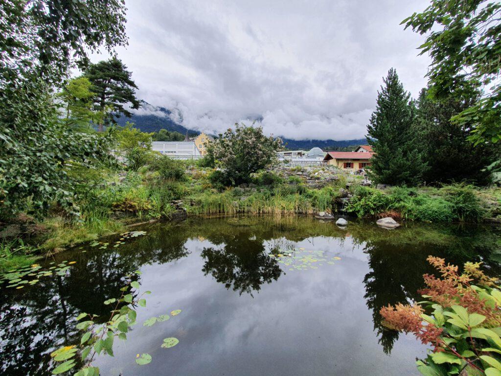 botanische tuin Universiteit van Innsbruck