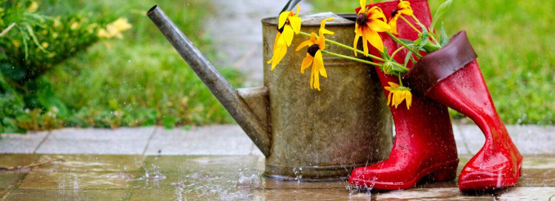 wateroverlast tuin