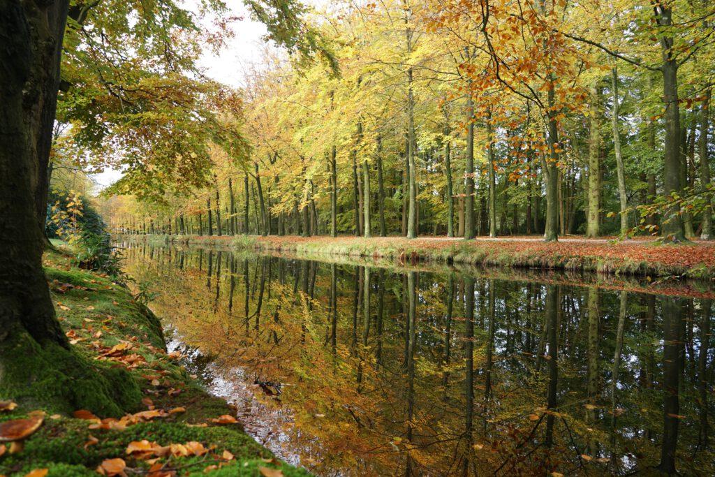 De natuur nabij landgoed Groeneveld