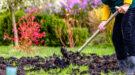 aanplanten najaar