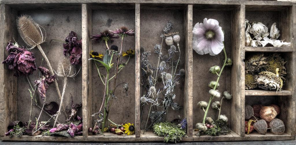 letterbak droogbloemen