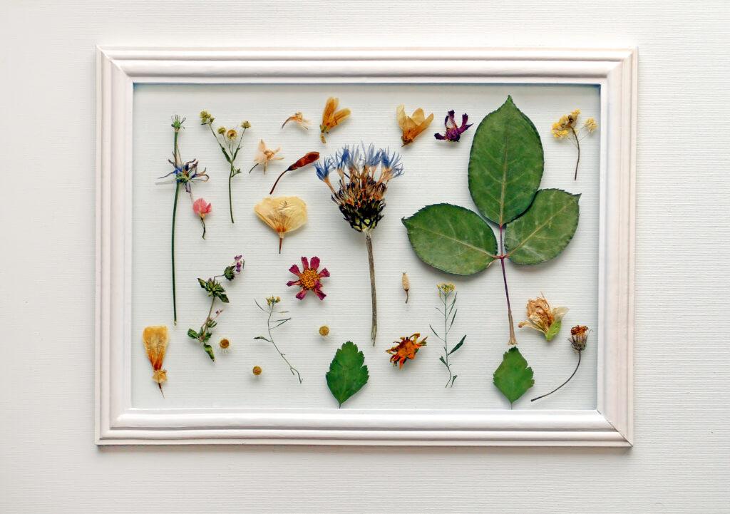 droogbloemen schilderij