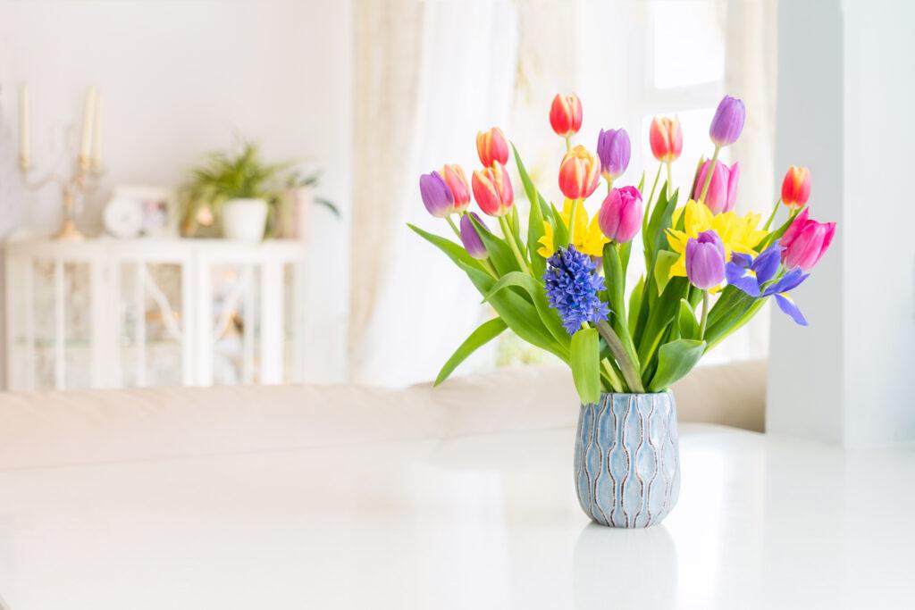 tulpen narcis