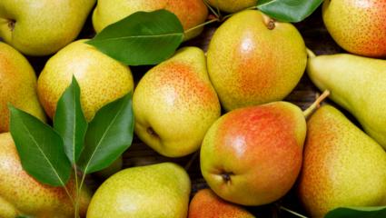 fruitpuzzel