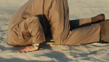 hoofd in het zand