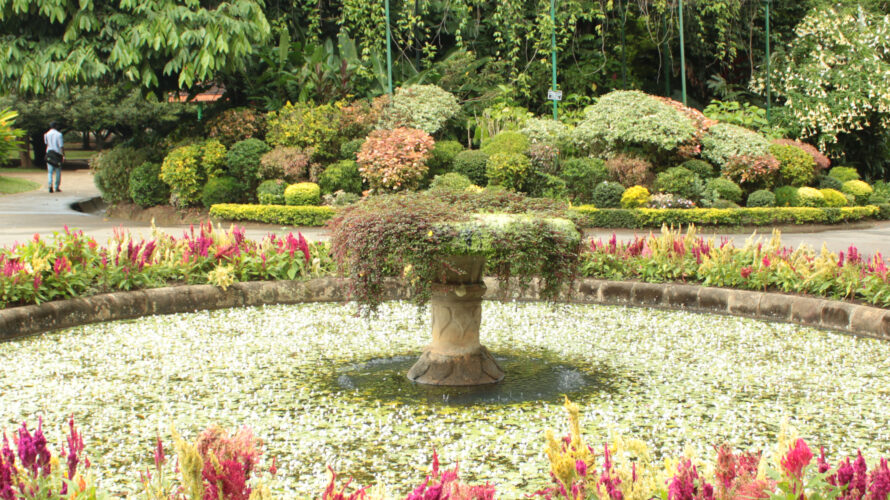 botanische tuin Sri Lanka