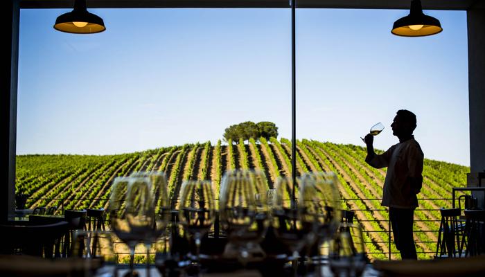 Wijnboerderij Quetzel