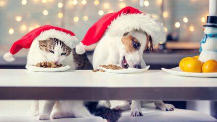 restjes kerstdiner